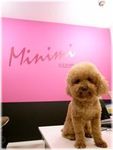 Minimi inn 米尼米民宿 - 墾丁大街海濱舘 Kenting St.