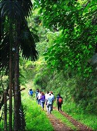 里德社區 生態旅遊