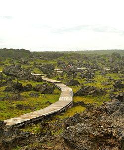 國境之南社區[鵝鑾]生態旅遊